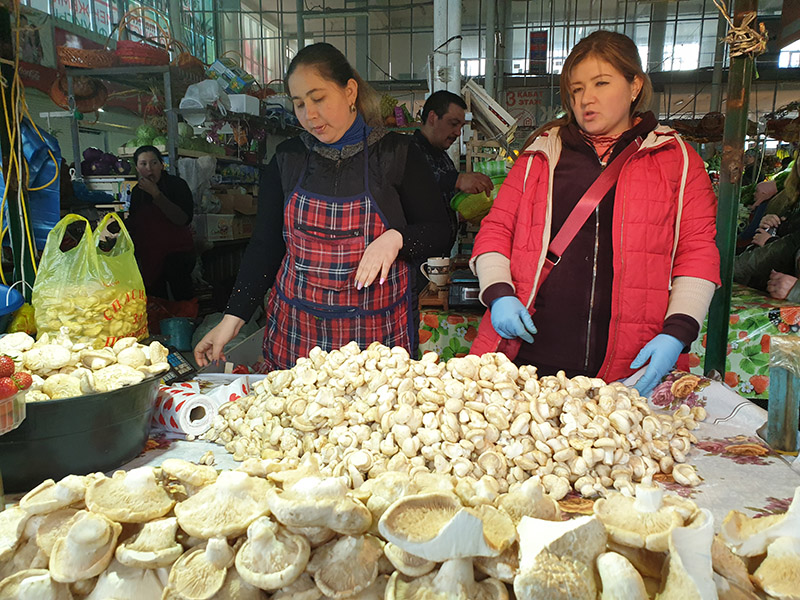 В Шымкенте грибы продают по цене мяса