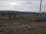 История с изнасилованием 9-летней девочки в Шымкенте