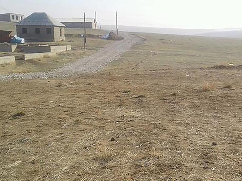 Более тысячи самовольно захваченных земельных участков легализовали в Шымкенте