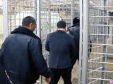 Задержан директор шымкентского филиала ТОО «ESTATE Ломбард»