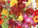 О стоимости цветов в предпраздничные дни в Шымкенте рассказали флористы