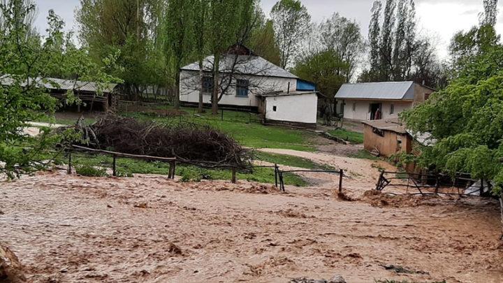 Из-за ливней сель сошел в двух населенных пунктах Толебийского района Туркестанской области