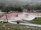 Ливневый поток смыл мосты и скот в селе Каскасу Толебийского района