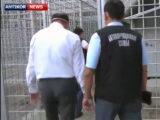 Крупный чиновник Шымкента водворен в изолятор временного содержания