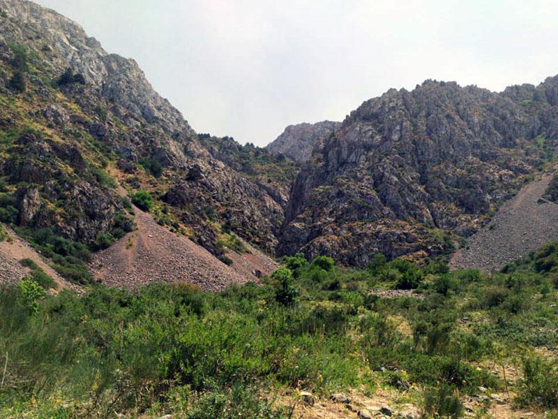 Более 5 часов спасали школьников в ущелье «Бургулюк» в Туркестанской области