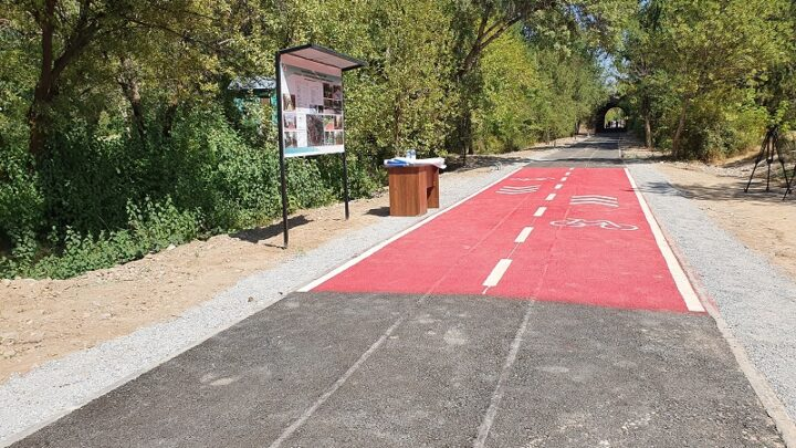 Детскую железную дорогу променяли на велодорожки в дендропарке Шымкента