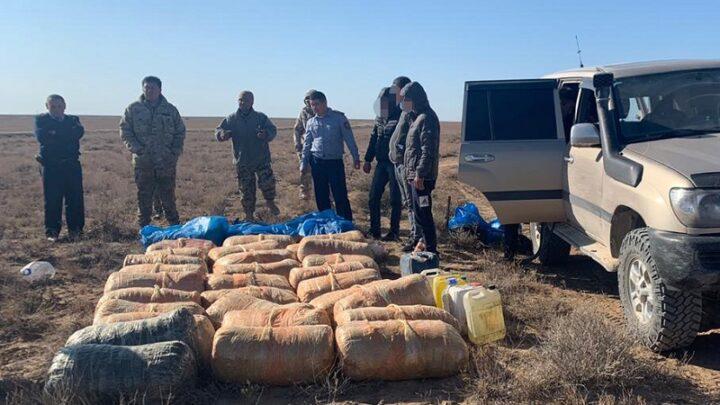 Небывалую партию наркотиков задержали полицейские Туркестанской области