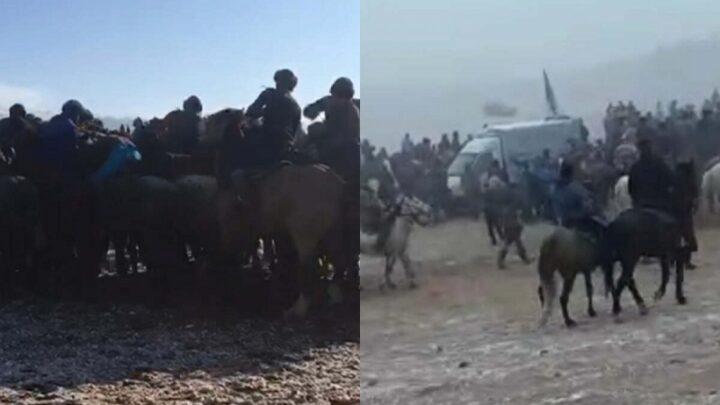 Организаторов кокпара наказали полицейские Туркестанской области