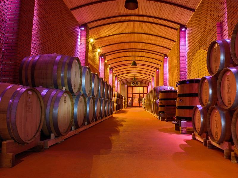 Как казахи стали признанными виноделами в мире