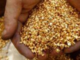 95 млн 801 тысяч тенге и 356 тысяч долларов США изъято у нелегальных добытчиков золота в Казахстане