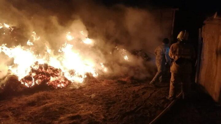 Трое детей погибли из-за возгорания сена в Атырауской области