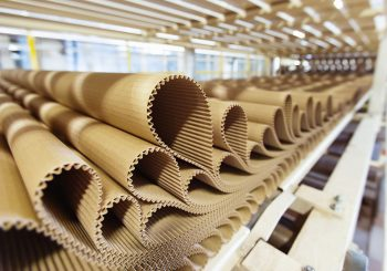 Трудности с сырьем испытывает новое предприятие по производству картона в Шымкенте.